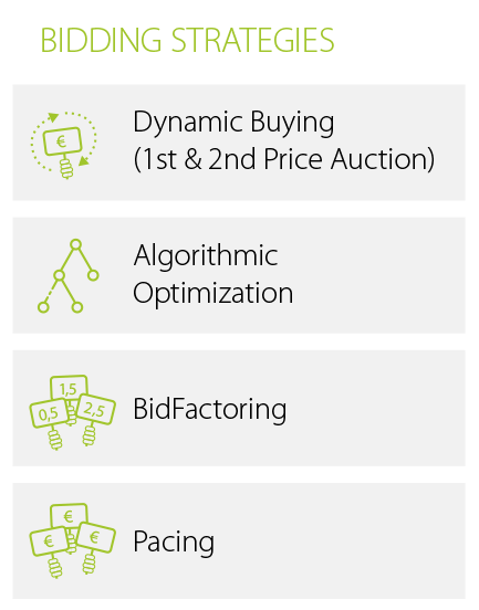 Demand Side Platform (DSP) Bidding Strategies