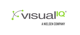 visualIQ Logo
